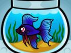 Фотография в Рыбки (Аквариумистика) Аквариумные рыбки склеиваю аквариум с любого стекла в Александрове 0