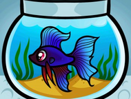 склеиваю аквариум с любого стекла склеиваю аквариум с любого стекла