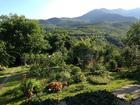 Уникальное изображение Загородные дома Продается Дача в заповедном месте горного Крыма возле водопада Джур-Джур 39954908 в Алушта