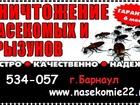 Фото в   Уничтожение тараканов, клопов, блох, мышей. в Барнауле 1000