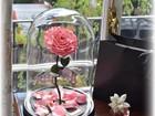 Скачать бесплатно изображение Разное Уникальный подарок долговечная роза 39861265 в Барнауле