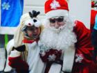 Скачать бесплатно изображение  Дед Мороз и Снегурочка на дом и в офис 68386752 в Челябинске
