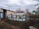 Свежее foto Сады продам сад в СНТ АВИАТОР срочно 69103940 в Челябинске