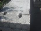 Скачать изображение  Железобетон б/у (плиты перекрытия,балки, фбс) 76490849 в Челябинске