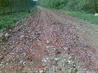 Скачать бесплатно изображение  Нужен строительный мусор для подсыпки дороги 69842661 в Череповце