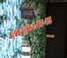 Фотография в Электрика Электрика (услуги) Мы осуществляем все виды ЭЛЕКТРОМОНТАЖНЫХ в Дмитрове 300
