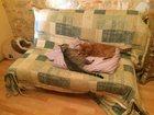 Фото в Мебель и интерьер Мебель для спальни Продам диван раскладной, ширина 140см, в в Екатеринбурге 3000