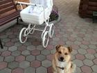 Фотография в Для детей Детские коляски продам коляску 2 в 1 Удобная, надежная, в в Екатеринбурге 17500