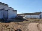 Смотреть фотографию  продам действующую ферму п, Елецкий 74685927 в Ельце