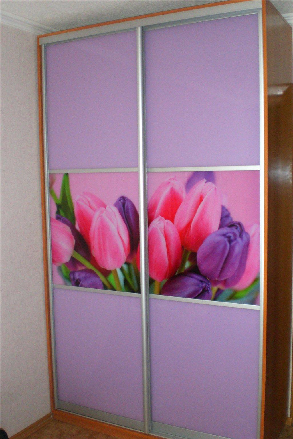 Хабаровск: шкафы-купе на заказ по размерам заказчика цена 0 .