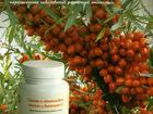 Смотреть изображение  Полиен с облепиховым маслом и витамином E (Омега 3) 39839191 в Ижевске