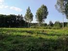 Новое foto  Калязин, СТ Мечта, Участок 30 соток на 2-й линии Волги, 68046834 в Калязине