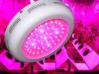 Фото в Электроматериалы Лампы UFO LED GROW 25*3W (75Вт)  Светодиодный светильник в Калуге 2000