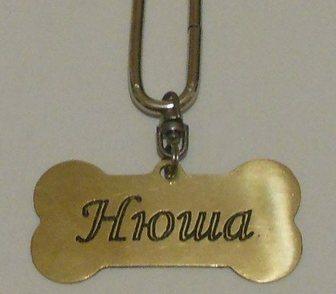 Изображение в Прочее,  разное Разное Лазерная гравировка на жетонах для домашних в Казани 200