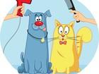 Просмотреть фото Стрижка собак стрижка собак кошек с выездом на дом 79327026 в Кемерово