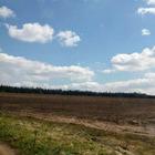 Продаю земельный массив 2,5 га в поселке Садаковский