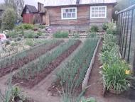 Продам сад Садовый участок 5, 5 соток ухоженный, с домом, баней, в Слободском р-