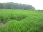 Увидеть фото Земельные участки 25 сот, ЛПХ в селе Непецино 35519233 в Коломне