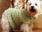Скачать бесплатно foto Пошив, ремонт одежды Вяжу одежду для животных, 35278877 в Комсомольске-на-Амуре
