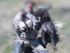 Увидеть foto Вязка собак Дратхаар ищет подругу для вязки 66487278 в Комсомольске-на-Амуре