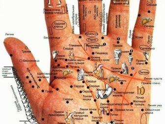 Увидеть изображение Прием у специалиста Диагностика организма высокоточным прибором 33763107 в Костроме