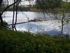 Увидеть foto  Лов вьюна на Кубани и отдых 36587969 в Краснодаре