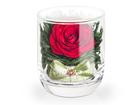 Фотография в Хобби и увлечения Разное Цветы в стеклянных закрытых вазах различной в Краснодаре 1000