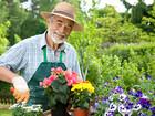 Уникальное изображение  работа садовника 39034609 в Краснодаре