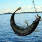 Охота и рыбалка на Волге, Пляж на Базе Булгарский дворик