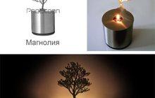 Проекционный светильник Магнолия