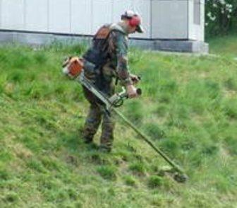 Фото в Резюме и Вакансии Резюме Покос травы бензокосой, мотокосой, триммером. в Краснодаре 0