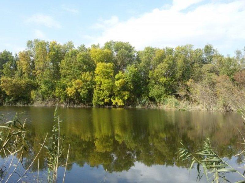 Рыбалка в краснодарском крае новомышастовская