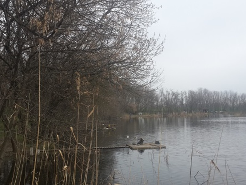 Рыболовно-гостиничный комплекс - УДАЧА РЫБАКА, вид деятельности и отзывы в Краснодаре