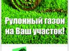 Скачать фотографию Разное Рулонный газон 36602495 в Красноярске