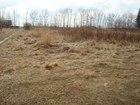 Скачать изображение  земельный участок снт нанжуль 3 38911432 в Красноярске