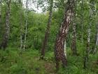 Свежее изображение  продам з/у в Кузнецово (Кузнецовское плато) в лесной части массива 39426595 в Красноярске