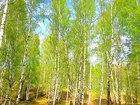 Увидеть фото  Продам земельный участок с фундаментом 66487059 в Красноярске