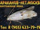 Фото в   Быстро и недорого, уничтожим насекомых озоном. в Москве 5500
