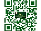 Скачать бесплатно фотографию  Дрессировка собак Видное Домодедово Подольск 38011458 в Москве