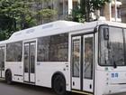 Скачать изображение  автобусы нефаз 5299-30-31 39152485 в Набережных Челнах