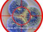 Увидеть фото  Как убрать плесень со стен, потолка в помещении, Как избавиться от грибка в ванной, 39270726 в Москве