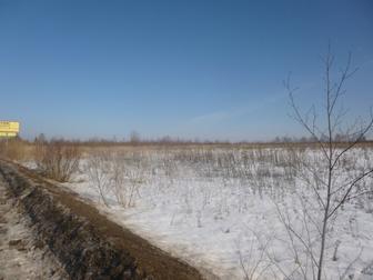 Уникальное фото  Дешево! 100 соток сельхоз земли в 10 минутах ходьбы от реки Волга,125 км от Москвы 38881289 в Москве