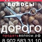 Покупаем волосы, в Липецке