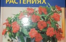 М Гесдерфер Все о комнатных растениях