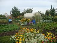 Продам сад Ухоженный сад (10 соток), земля в собственности, все посадки, 2 бака
