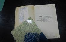 Учись грамотно писать по-русски