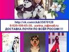 Фотки и картинки Сибирский хаски смотреть в Мирном