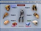 Уникальное foto Аксессуары Технология изготовления и ремонт меховых шапок 32690591 в Москве