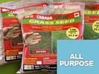Свежее фото Разное Газонная Трава КАНАДА ГРИН! Gazon Canada Green Grass Seed? New Formula! 35154406 в Москве