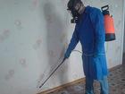 Просмотреть foto Разные услуги Частный Дезисектор 37409710 в Москве